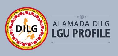 dilg lgu profile banner